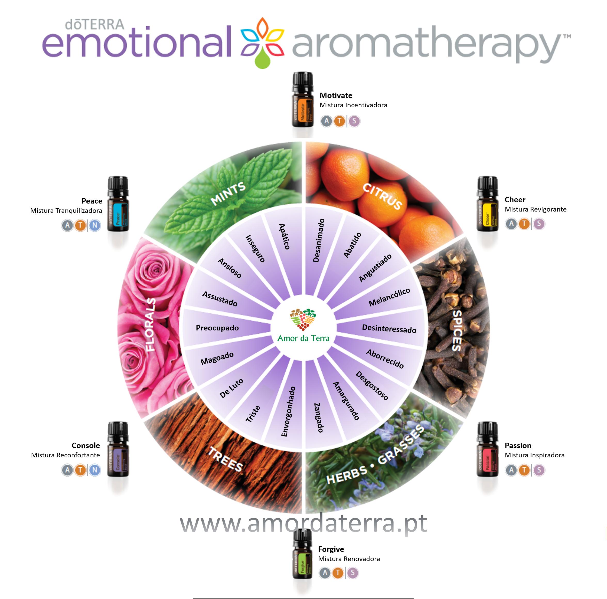 Roda Aromaterapia Emocional