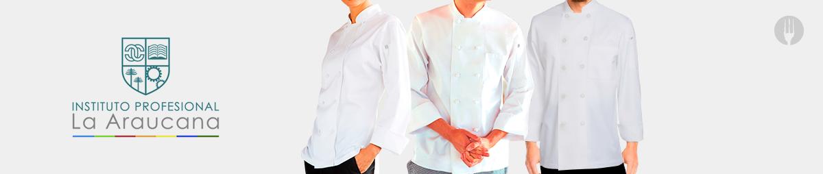 https://chef.uschile.cl/search/la%20araucana