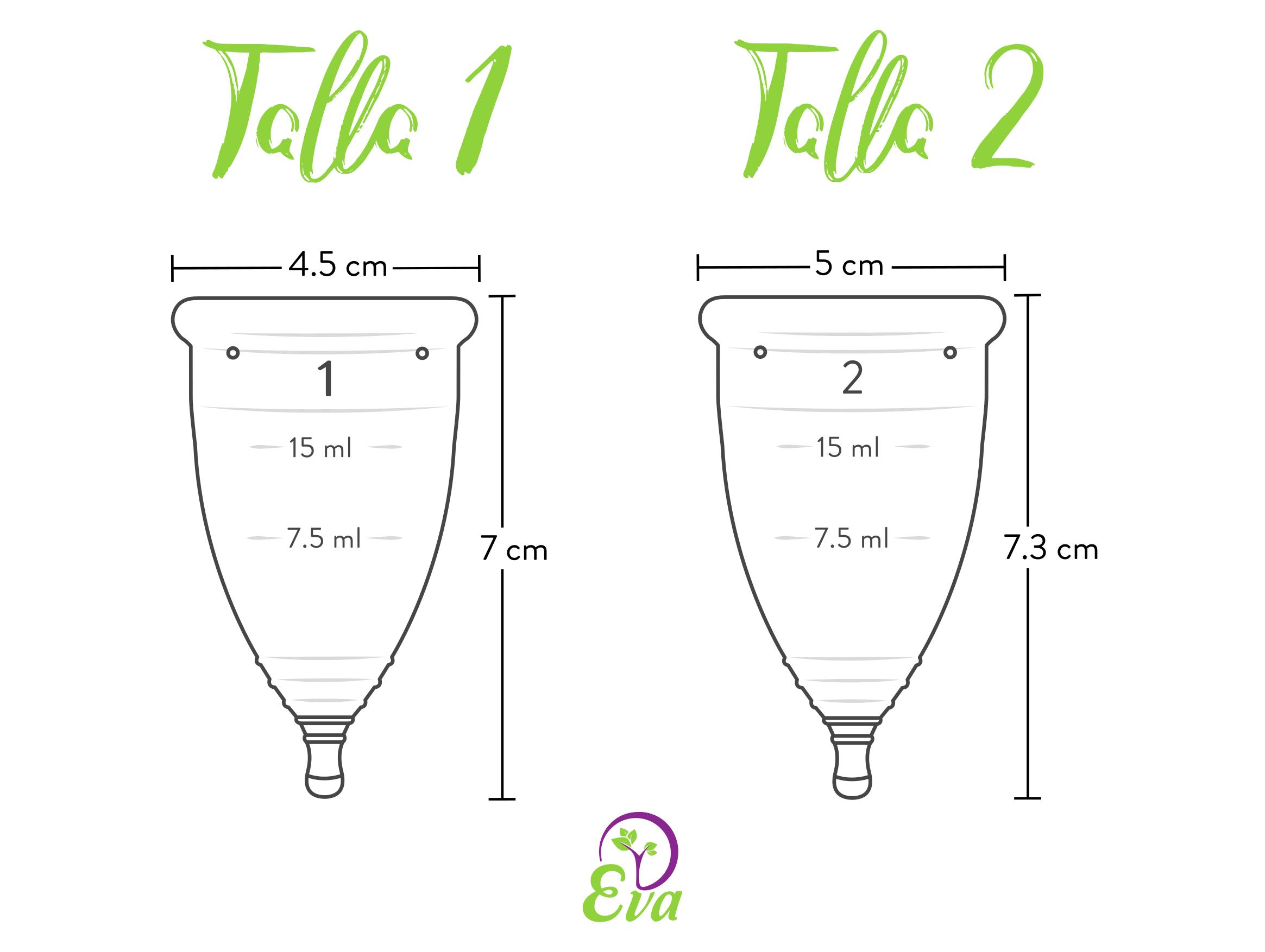 Dimensiones tallas copa menstrual Eva