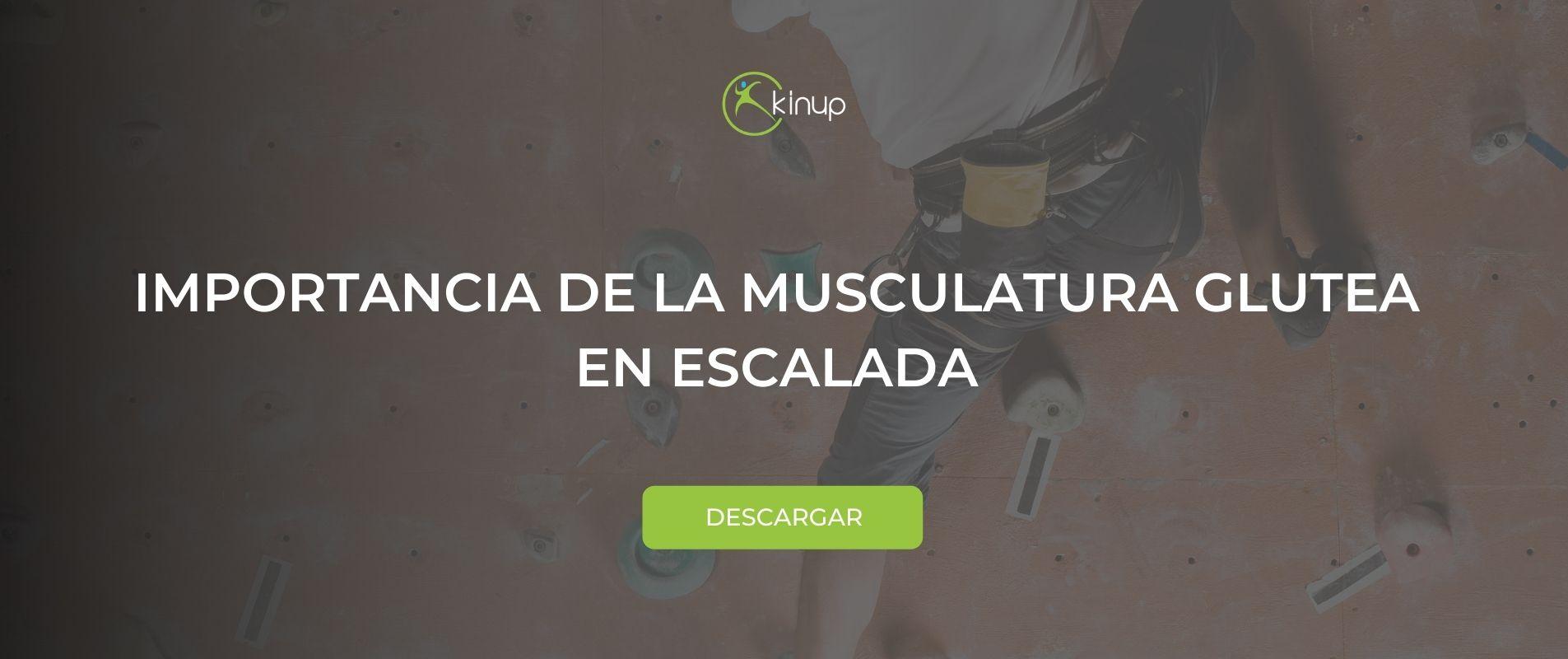 IMPORTANCIA DE LA MUSCULATURA GLUTEA EN ESCALADA