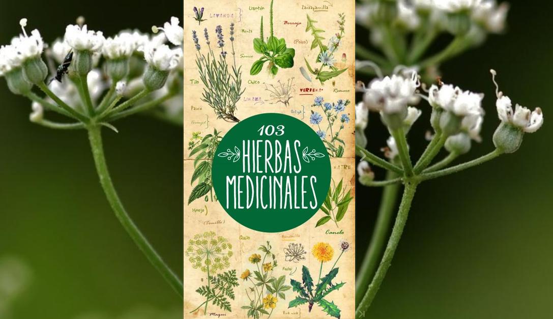 103 hierbas medicinales