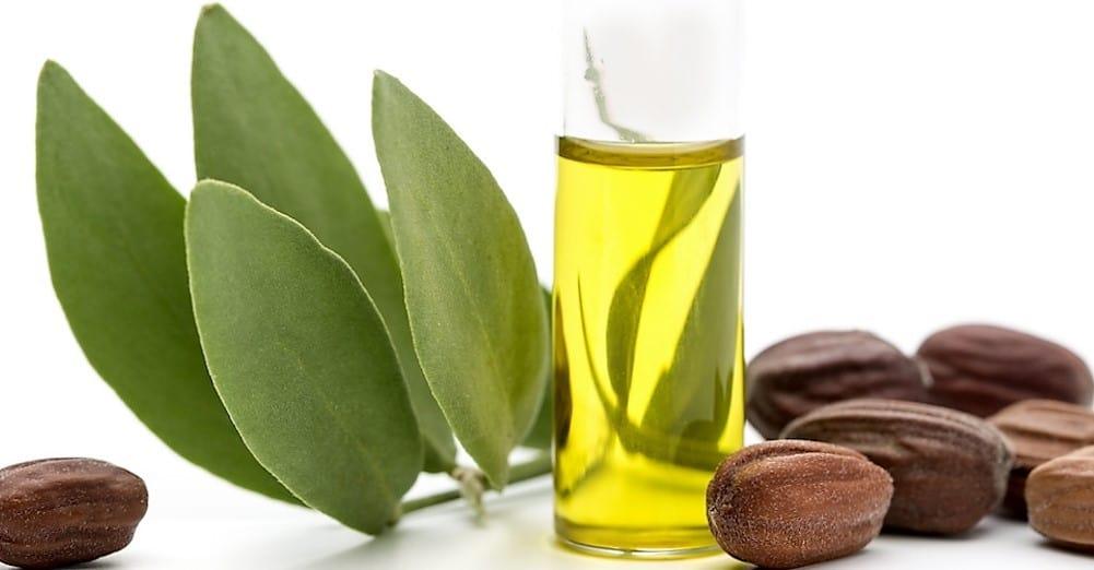6 beneficios del aceite de jojoba para tu piel y cabello