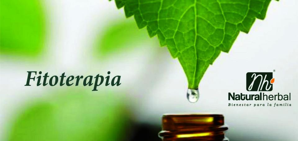 Qué es la fitoterapia