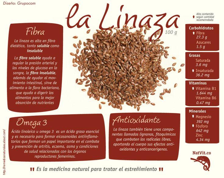 Beneficios para la salud de la linaza