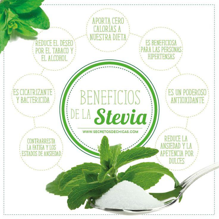 ¿Para que sirve la stevia?