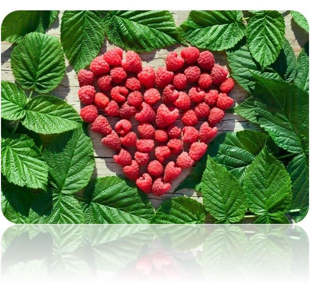 Exfoliante orgánico de frambuesa natural con sabor y aroma comestible